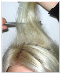 Backcombing with tail comb